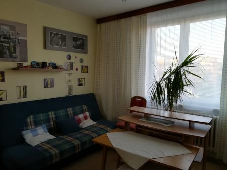 pokoj 1 - Byt na pronájem Brno